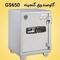 گاوصندوق گنجینه GS650