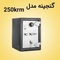 ganjinehsafe-G250krm